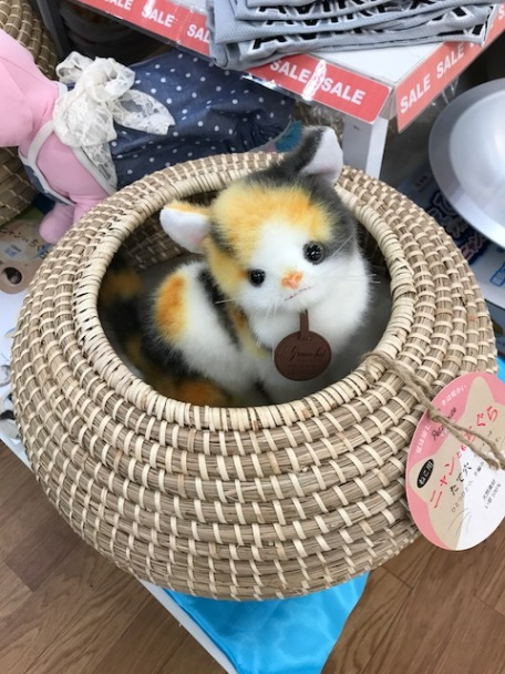 What an adorable little cat bed, Tokyu Hands, Shinsaibabshi, Osaka, Japan. I know my cats used to love boxes and drawers. The Japanese ingenuity is always amazing. Need to import these to the US!