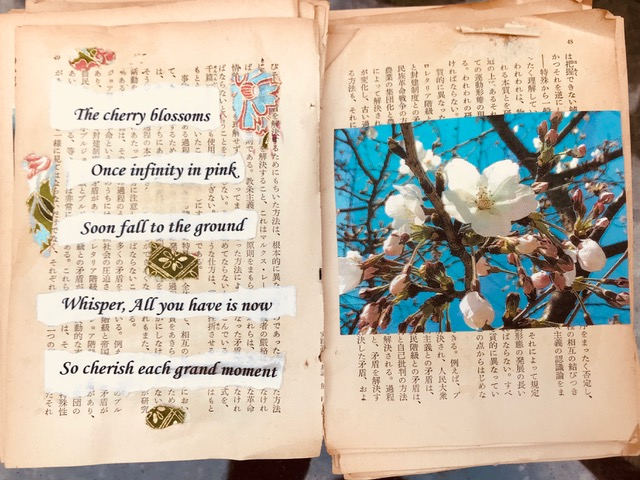 Tanka poem I wrote about Sakura, cherry blossoms, from my first experience of the event in 2017 when we came to look for housing. I made a hand-made book of the poetry and photographs from a book I pulled out of our apartment's recycling bin! One day to be published! Poem, photo and art by Sydney Solis