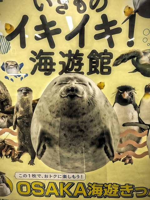Everything cute and kawaii in Japan! A great reverence for animals and nature is behind it all. Unlike the West, which seeks to destroy and conquer nature, Japan harmonizes with it! Makes a big difference in quality of life!