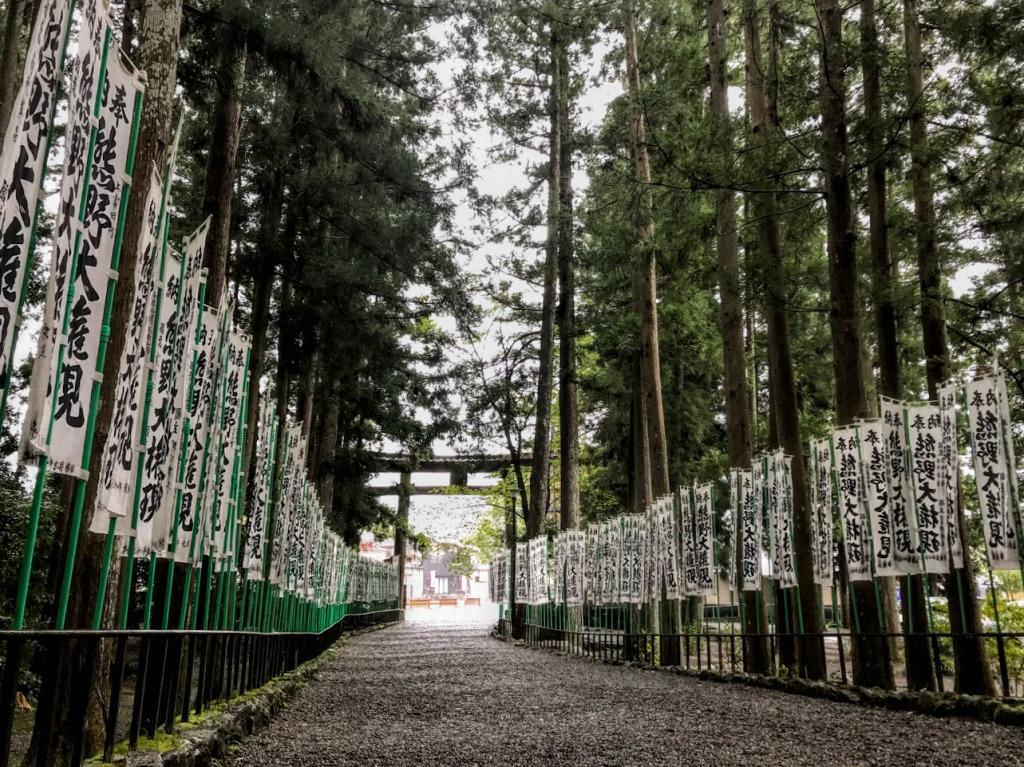 Walking to Hongu Taisha